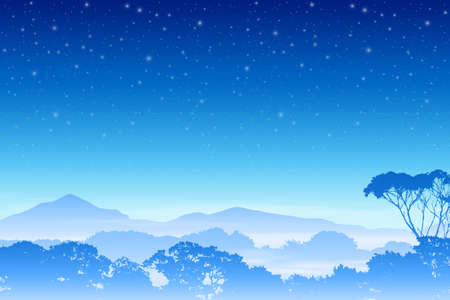 tree canopy: A Misty Forest Landscape with Trees and Night Sky. Vector EPS 10.