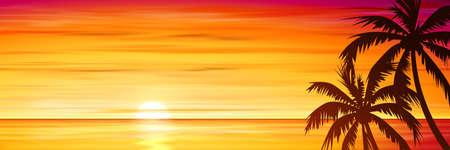 sunrise beach: Palm Trees with Sunset, Sunrise and Sea, Ocean. Vector