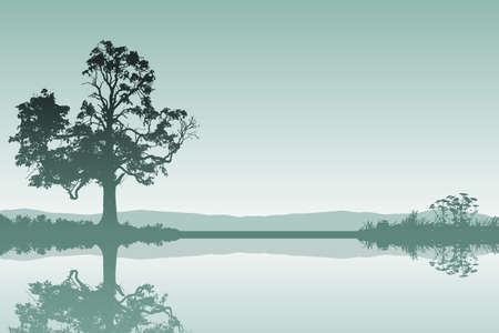 물에 시골 나무 풍경과 반사 일러스트