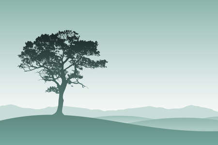 lone tree: A Lone Tree in Silhouette with Meadow Landscape