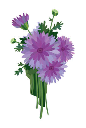 bouquet  flowers: Bouquet of chrysanthemums on a white background Illustration