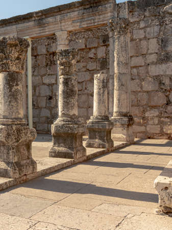 Portrait view of the ruins of synagogue in Capernaum Israel Standard-Bild