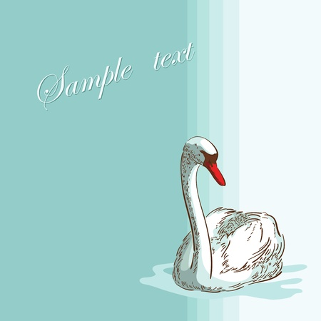 Swan on the  blue background Vector