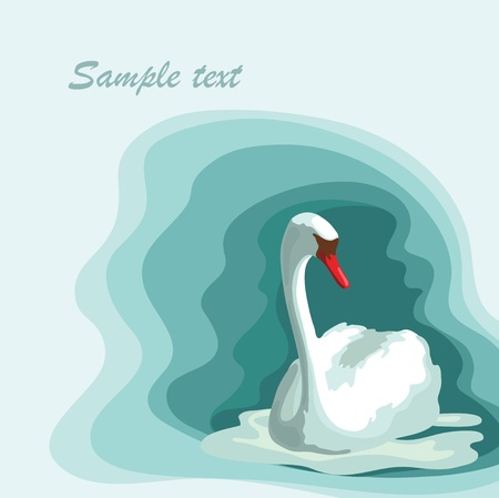 White swan on the blue background Vector