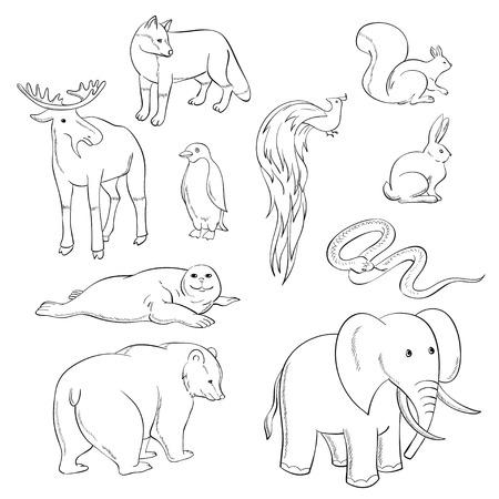 predatory: Many isolated animals Illustration
