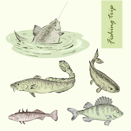 Fishing trip and river fish Vector