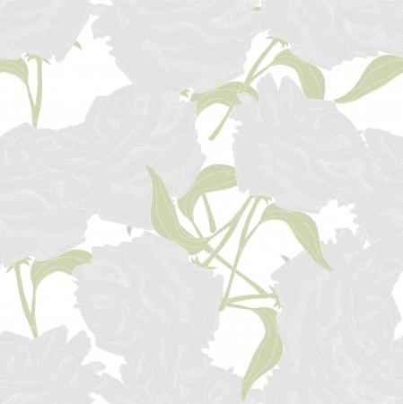 White roses on the white background Illustration