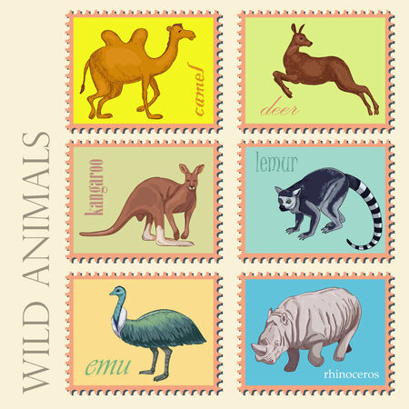 Wild animals from Africa and Australia