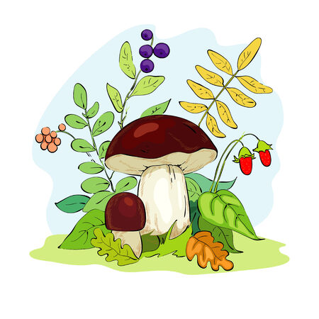 Mushroom and strawberries Vector