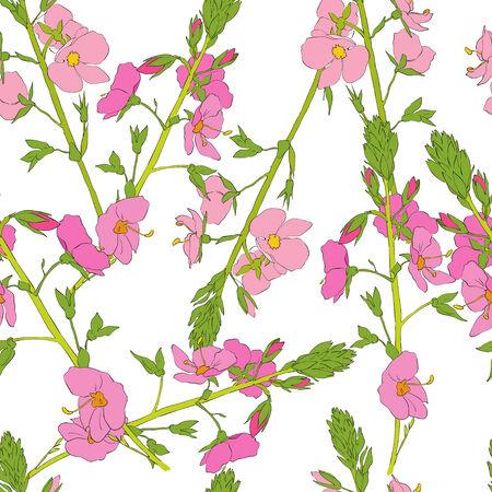 field of flowers: Field flowers