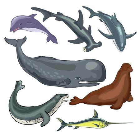 Underwater world of ocean Illustration