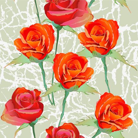 Red roses and green background