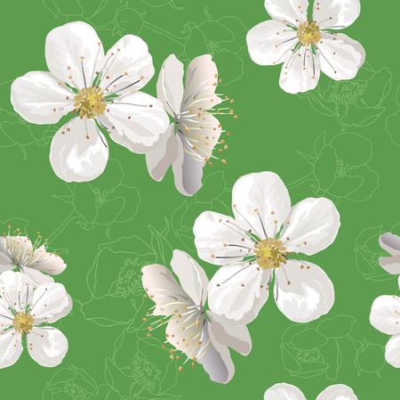 flowering: Flowering in garden Illustration