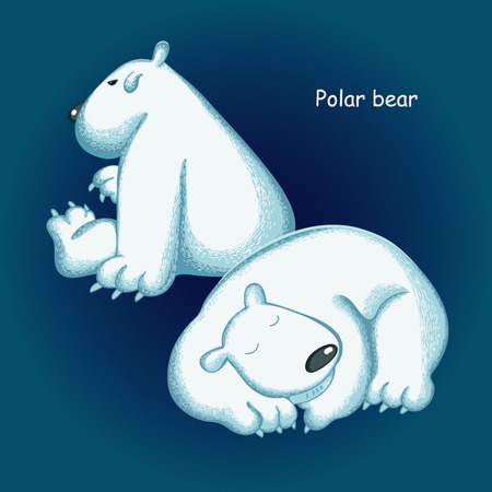 polar: Funny  polar bear Illustration