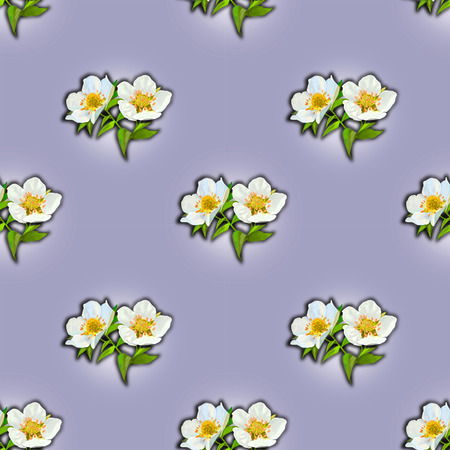 tender: Tender violet seamless with flowers