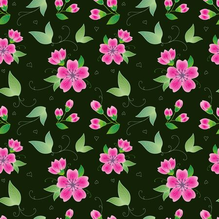 Pink flowers on black background Illustration