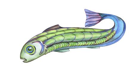 Drawinfg of fish