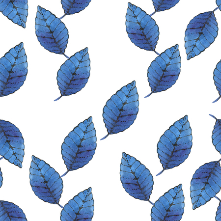 White background and blue leaf Stock Photo