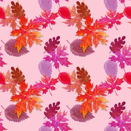 Bright autumn pattern for decor