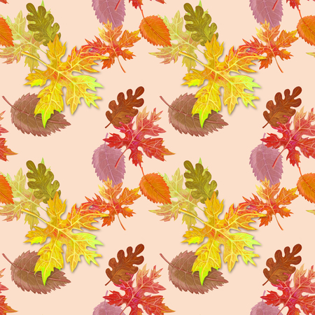 Autumn pattern for decor Reklamní fotografie - 95329982