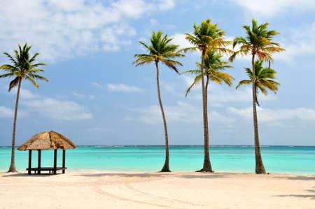 Beautiful Beach at the Dominican Republic