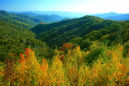 tennessee: Fall Season Colors, Great Smokey Mountains National Park Stock Photo