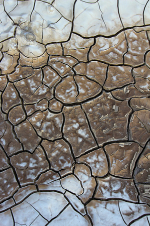 caked: Cracked soil dry earth texture background Stock Photo