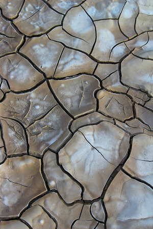 western usa: Cracked soil dry earth texture background, western USA