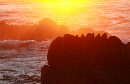 Silhouette of rock in ocean with sunset color background 写真素材