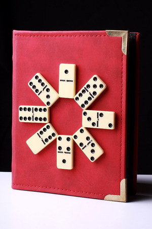 coherence: white domino as book cover