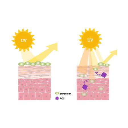 Proper application of sunscreen
