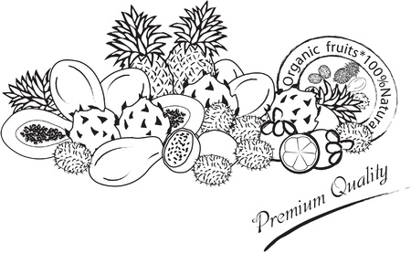 organic fruits design in black and white color Illustration