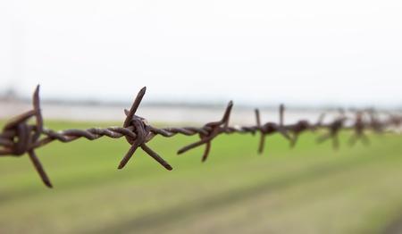 prisoner of war: barbed wire Stock Photo