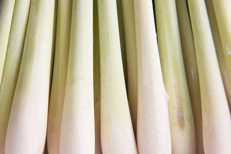 Fresh lemongrass background