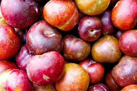 Plum, Pile of colorful summer fruits