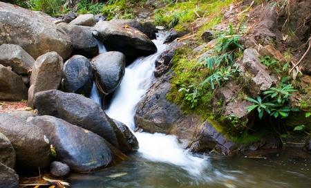 Cascade falls over mossy rocks of thailand