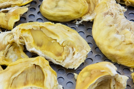 Close up dried durian process by hot air dried Stock Photo