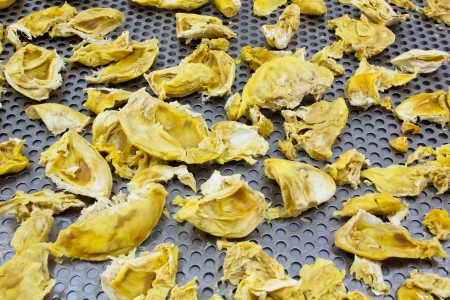 Dried durian on stainless tray after hot air dried