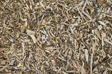 Wood chips texture