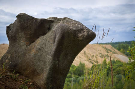 An interesting stone on the background of a quarry and green trees.