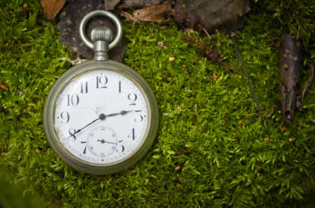Vintage Antique pocket watch on the background of moss and dry leaves.