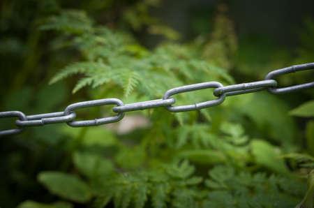 Iron chain against the background of vegetation. Stockfoto