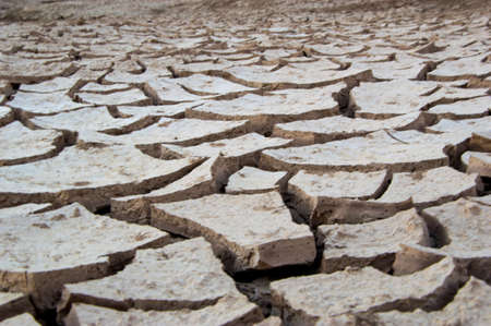 dryness: dryness