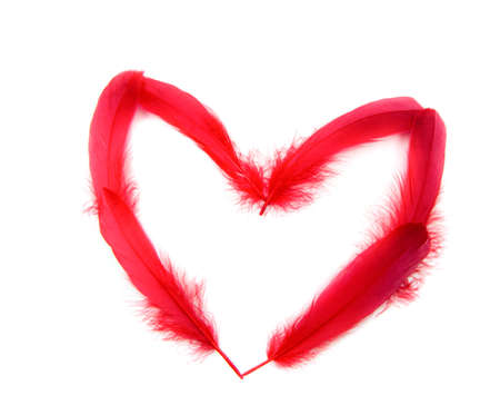 heart feather photo