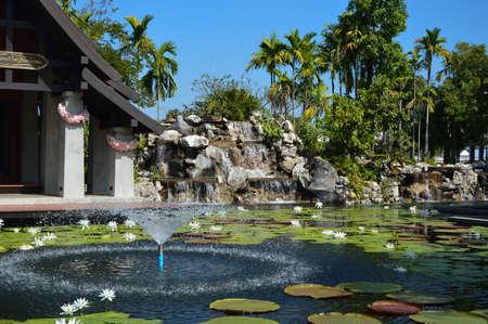 water garden: water garden