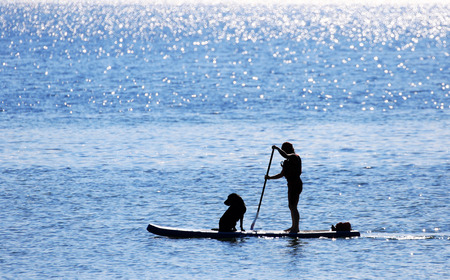 Paddler and Dog on Standup Paddle Board, Unrecognizable face, blue sea, Victoria, Canada 스톡 콘텐츠