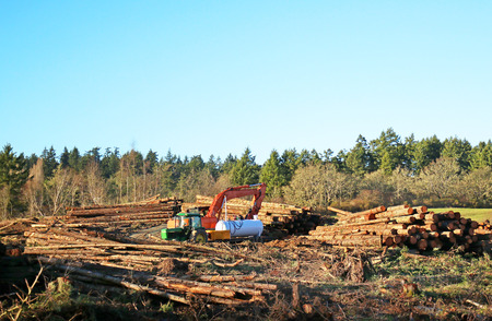 Logging Industry, machinery on Vancouver Island, Canada