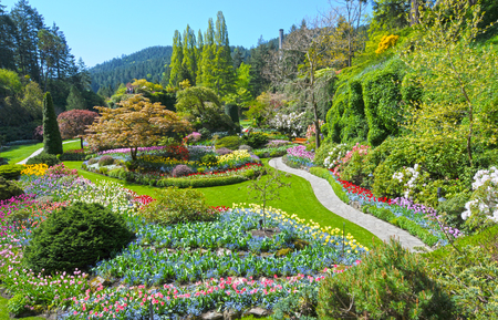 Lawn and Flower beds in the Spring with Lush colors, Victoria, Canada 스톡 콘텐츠