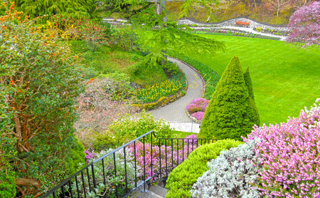 Pathway in a garden with lush green lawn and tulip flower bed. Spring time Garden in Victoria, Canada 写真素材