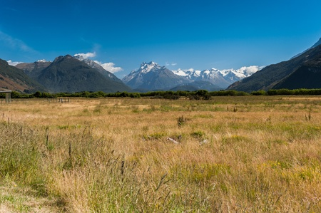 Grass field with snow mountain in background photo